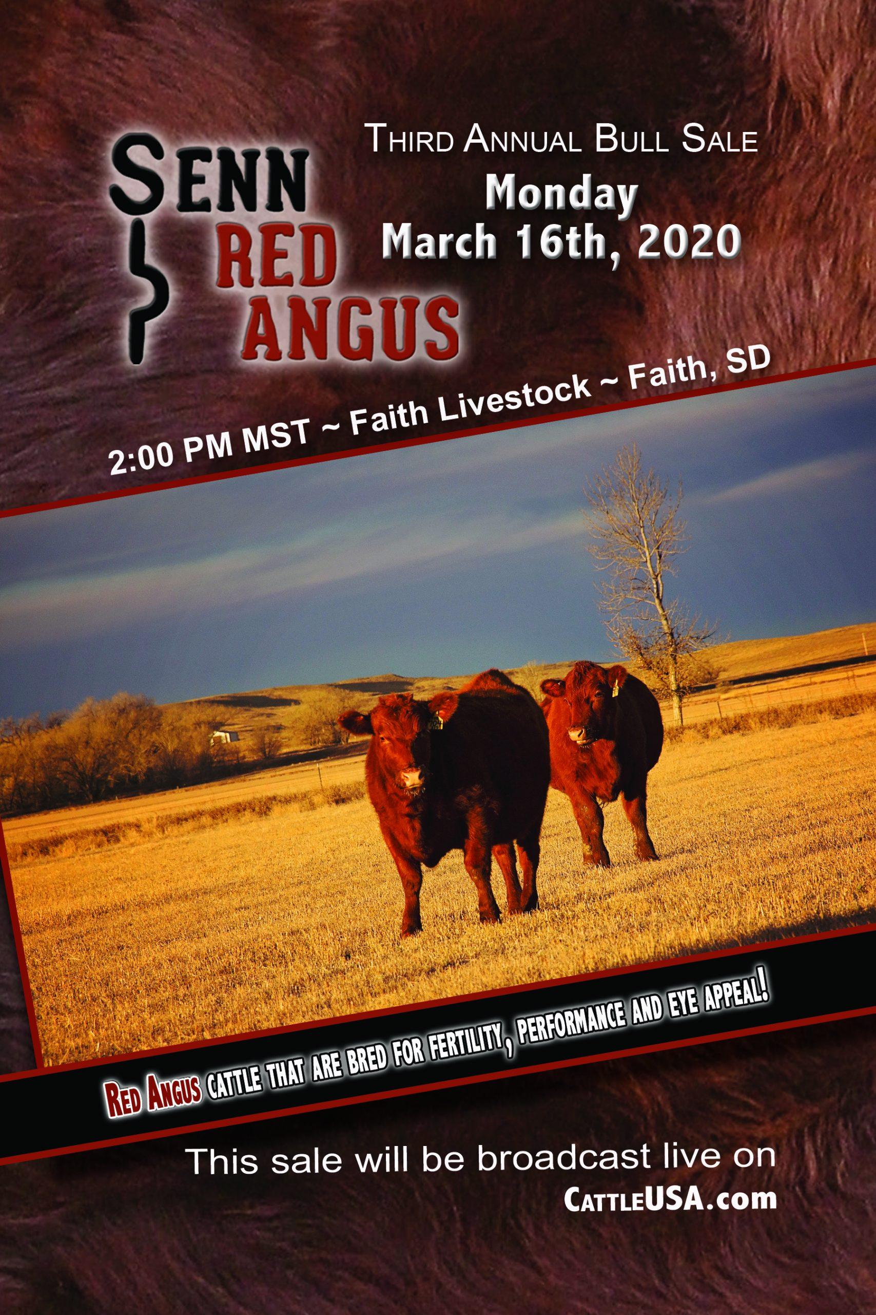 2020 Bull Sale Book Cover